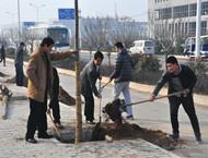 市雷竞技集团公司积极组织参加全市义务植树活动